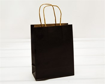 Пакет подарочный, 19х15х7,5 см, с кручеными ручками, черный - фото 10779
