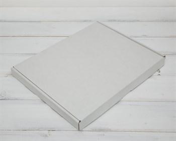 Коробка плоская 23,5х30,5х2,5 см, белая - фото 6290