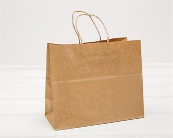 Крафт пакет бумажный, 18,5х22х10 см, с кручеными ручками, коричневый - фото 9576